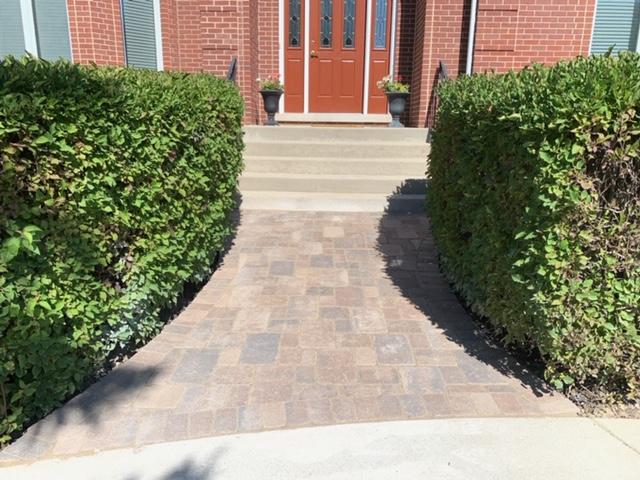 apls-brick-sidewalk-replaced